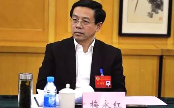 梅永红将同时在华大碧桂园任职 两家或合作