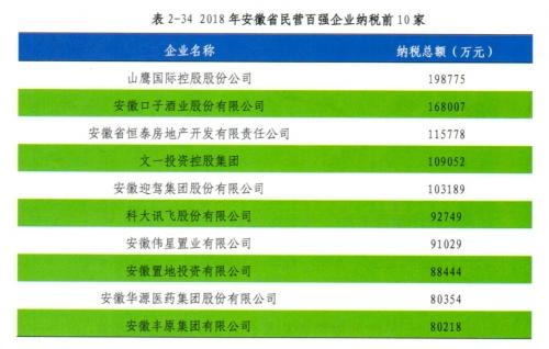 科大讯飞上榜安徽省2018年纳税百强企业,迎来人工智能红利期