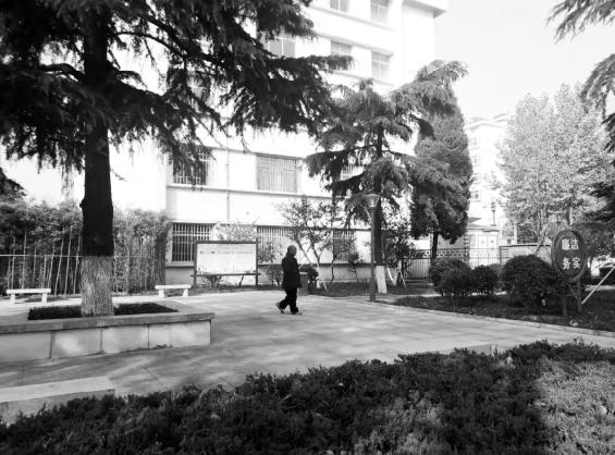 17处口袋公园扮靓牟平城!小公园小绿地建成开放成市民休闲好去处