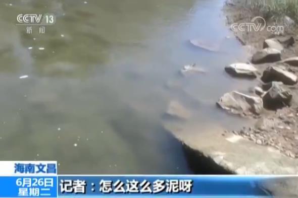 海南文昌环保再调查:水黑河臭依旧 污水处理厂成摆设 厂内收清水厂外淌污水
