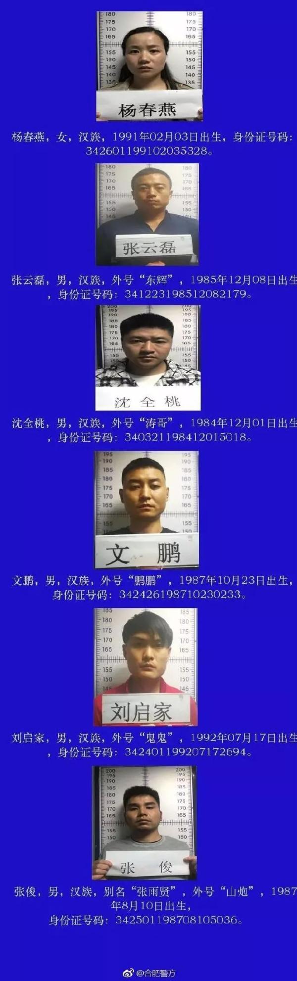 www.pj6999.com·2019中国·浙江舟山大学生创业大赛启动