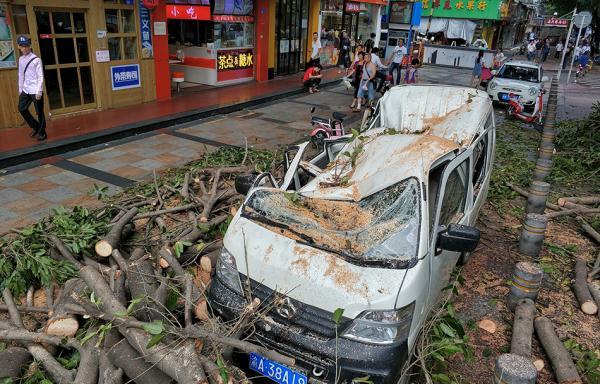 台风过境后深圳巨灾险启动理赔:所有人均可报案