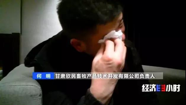 葡京国会tv,情商高,在爱情里懂得忍让的星座