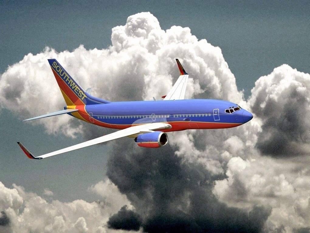 美西南航空连续2天出事 引擎爆炸后发生飞鸟撞击
