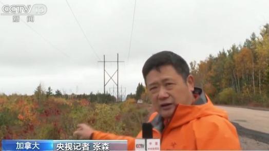 加拿大恶劣天气致多地断电 电力供应基本恢复 设施待改善