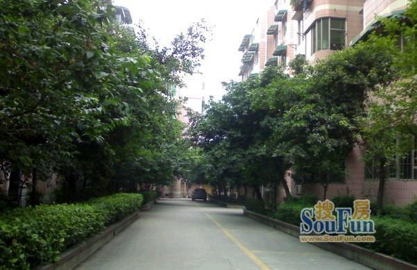 郫县教师公寓 PK 398新区谁是郫都热门小区?