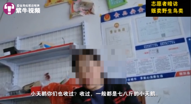 """钱柜娱乐怎么代理 李斌""""落难"""":何小鹏声援沈晖暗怼"""