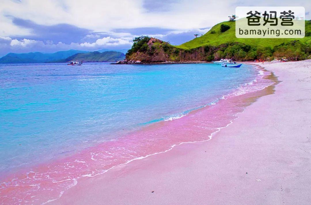 巴厘岛,清迈,西双版纳,银川,柬埔寨,6个暑假最好的东南亚亲子项目,任