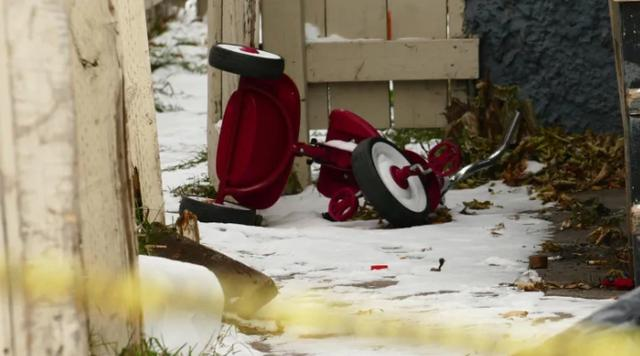 加拿大三岁男童睡梦中遇袭 重伤送医危在旦夕