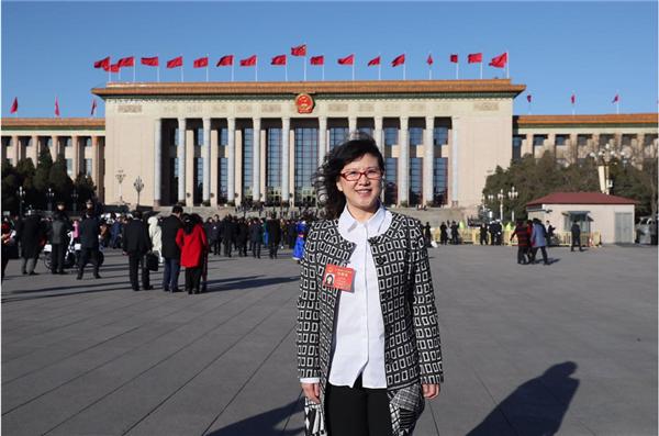 王家娟代表:共同破解执行难让群众更有获得感图片