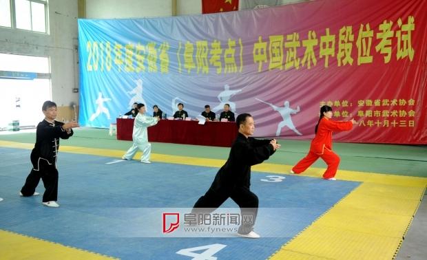 2018安徽中国武术段位制中段位考试阜阳考点举行