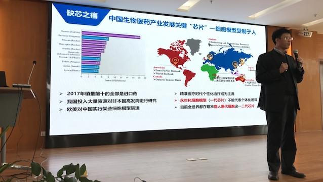 冠网址娱乐场官方下载 上海自贸区新片区:承担三大历史使命