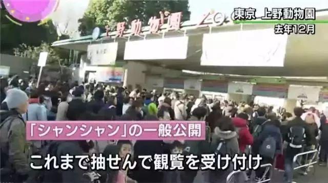 为了大】熊猫,矜持的→日本人开始撕破脸皮了
