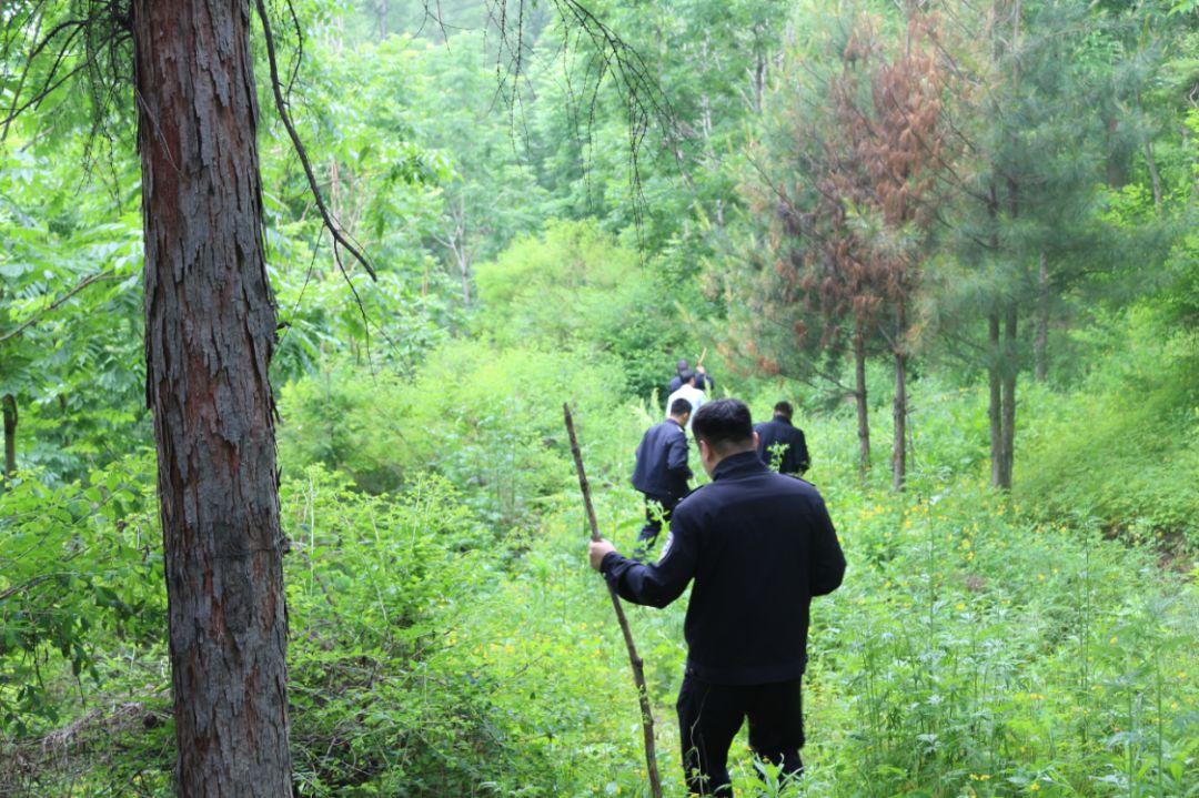 七旬老人进山失联24小时 70余森警冒雨搜寻救人一命