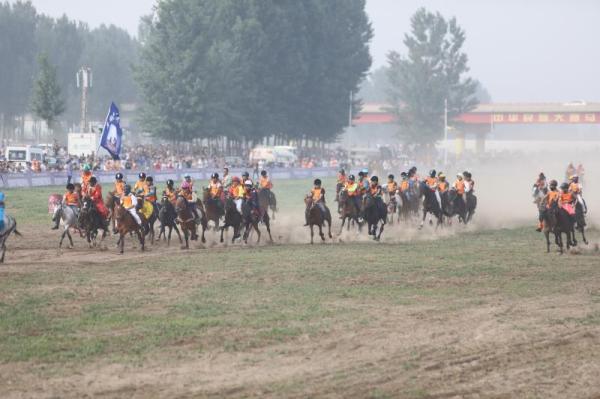 马业协会:赛马不等于赌马 一窝蜂赛马小镇将淘汰一批