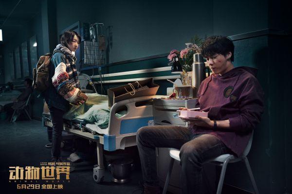 看《动物世界》如何扬长避短、以小搏大,闯出华语电影新路子!