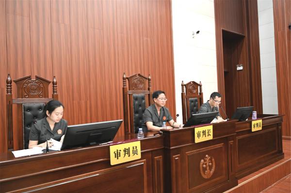 """鹤城区法院开庭审理一起10被告人涉恶势力集团犯罪案件--湖南省首例立案侦查、批准逮捕的""""套路贷""""案件"""