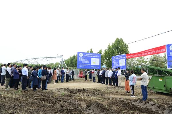 河南农业正在发生新奇变化!河南农大为玉米构建全产业链