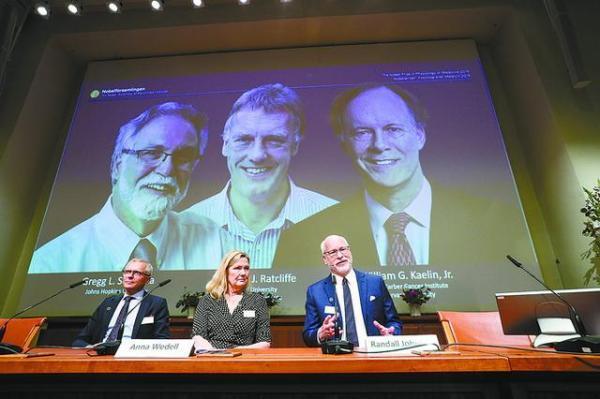 3名科学家夺2019诺贝尔生理学或医学奖,解读获奖研究成果