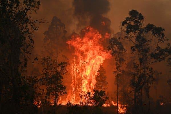 澳大利亚东部山火持续肆虐(图源:美联社)