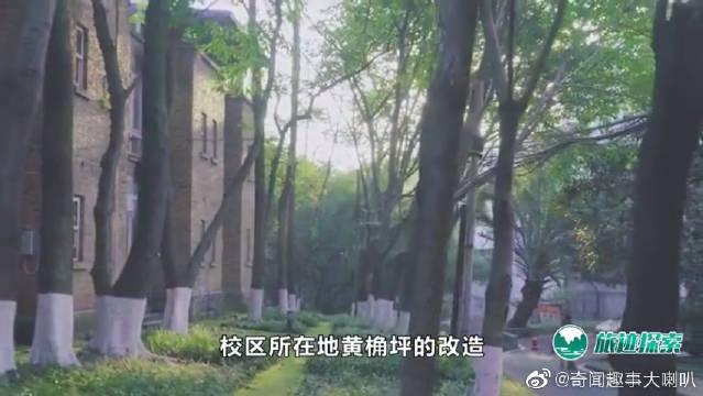 明明是四川美术学院,学校却建在重庆,为什么不搬到四川去?