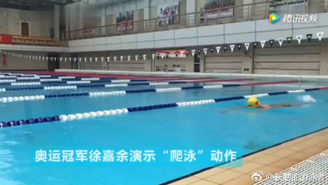 奥运冠军徐嘉余教你学会自由泳