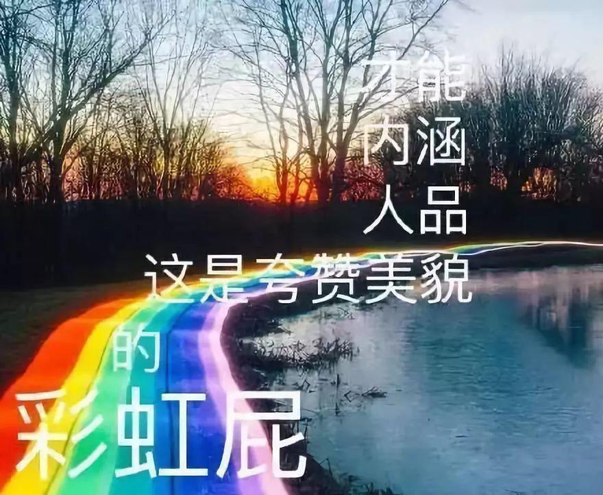 要说彩虹屁还是要服韩国人