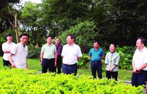 以乡村振兴为引领持续提升乡村治理现代化 打造产业兴旺生态宜居乡风文明的幸福乡村