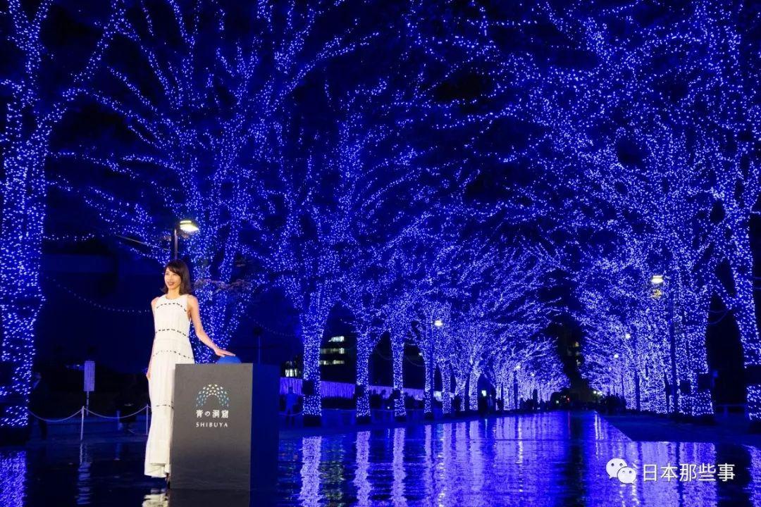 再为行家补充一下去年一些著名女星的圣诞点灯造型。