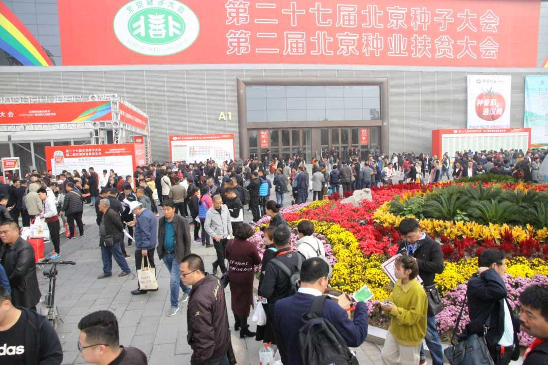 在北京种子大会看丰台种业