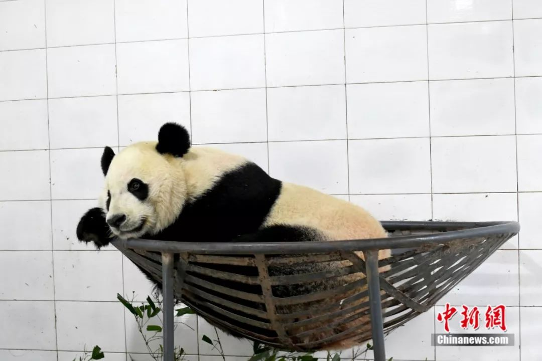pt游戏馆在线_网民称山西中阳环保局领导保护污染企业 官方回应