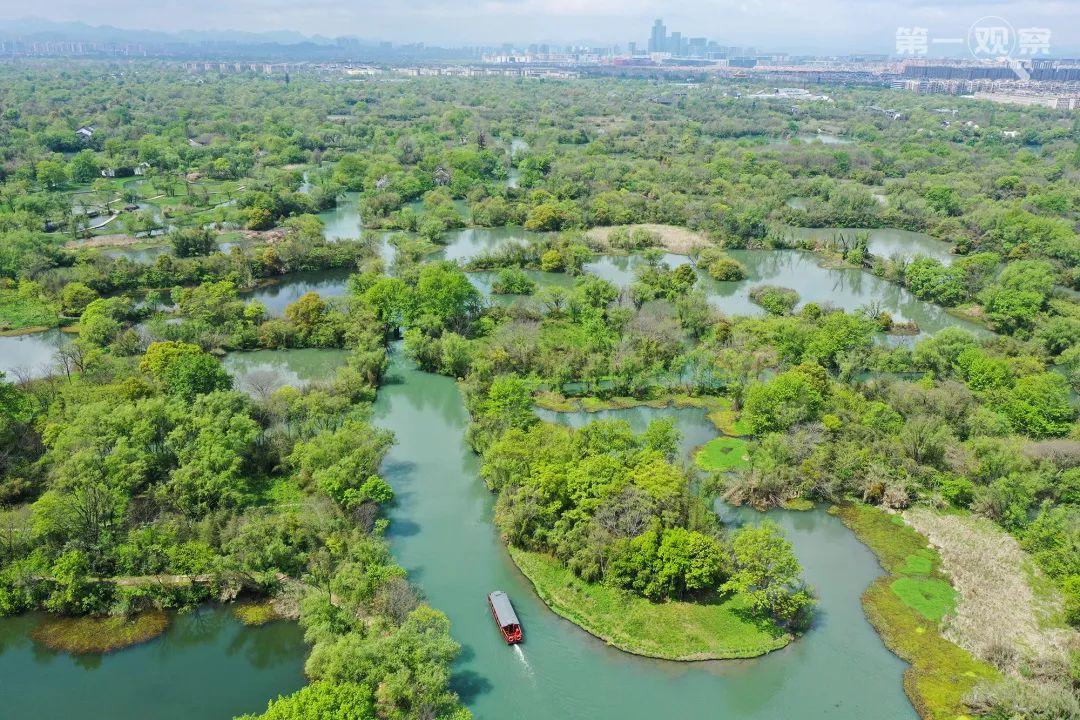 ↑游船行驶在浙江杭州西溪湿地水道上(2020年4月1日摄,无人机照片)。新华社记者 翁忻旸 摄