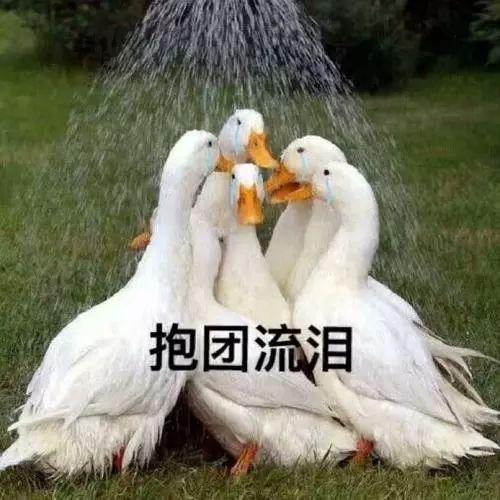 亲,你的双十一快递可能被烧了…广州一快递点起火,包裹全被烧毁