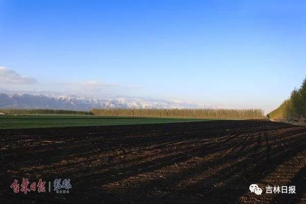 肥沃的黑土地。 吉林日报 资料图