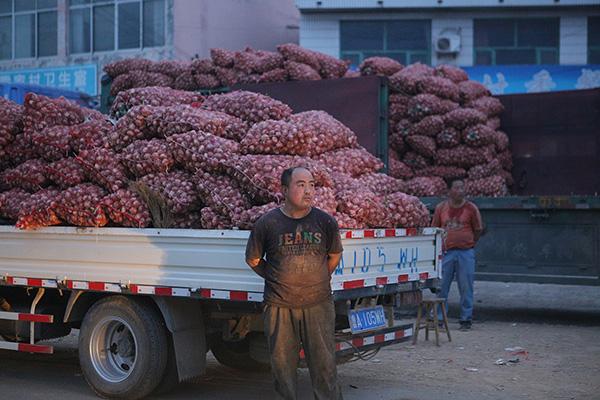 4月份,全国大蒜平均批发价每公斤5.44元,同比下跌59.9%。视觉中国 资料