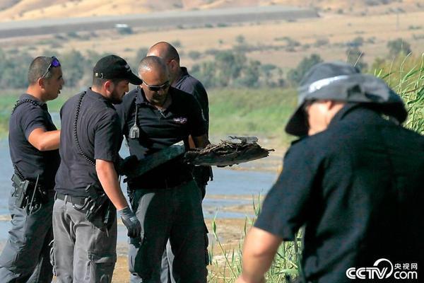 以色列用导弹击落一架来自叙利亚的无人机