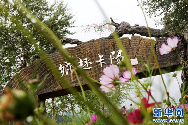 青海卡阳村:党建引领 村集体经济项目实现破零