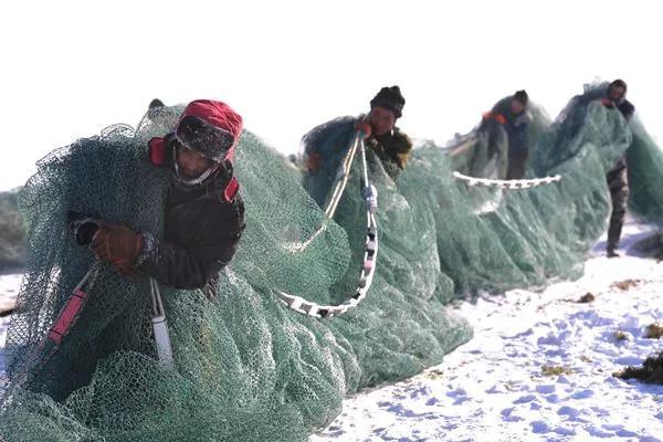 净土喀纳斯 雪都阿勒泰 这个冬天阿勒泰的冰雪将成为中国旅游名片