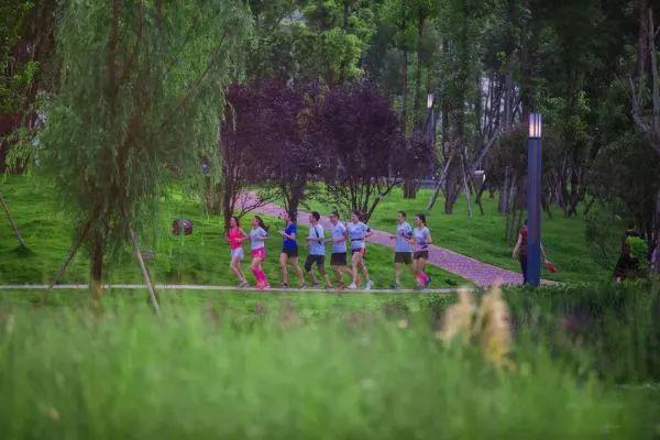 ▲成都市民已将跑步锻炼作为一种日常习惯。(图据健康成都)