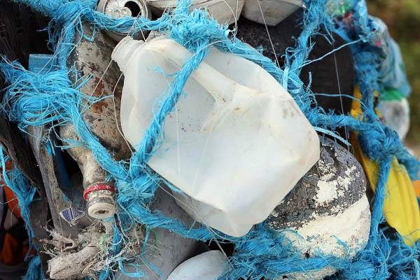 这些垃圾都是奥塔佐在红树林保育区回收的。