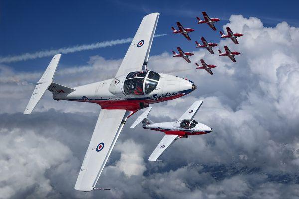 """加拿大""""雪鸟""""飞行表演队发生坠机事故"""