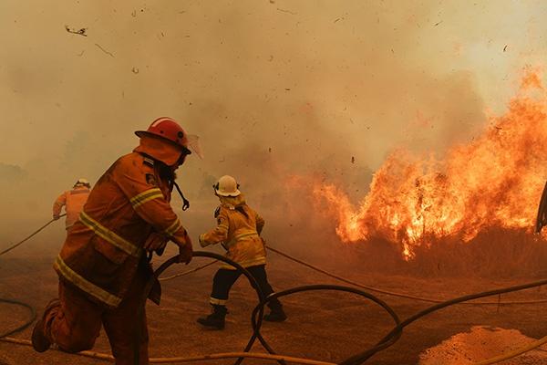 澳大利亚东部大火不断,数百只考