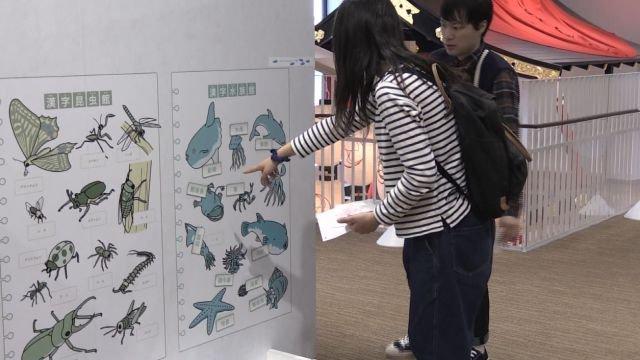 藤本和朋友认读汉字。(视频截图)