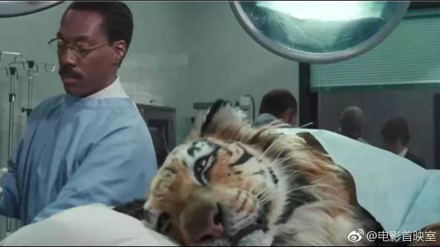 医生可以和小动物说话,这是超能力吗?治愈系的电影……