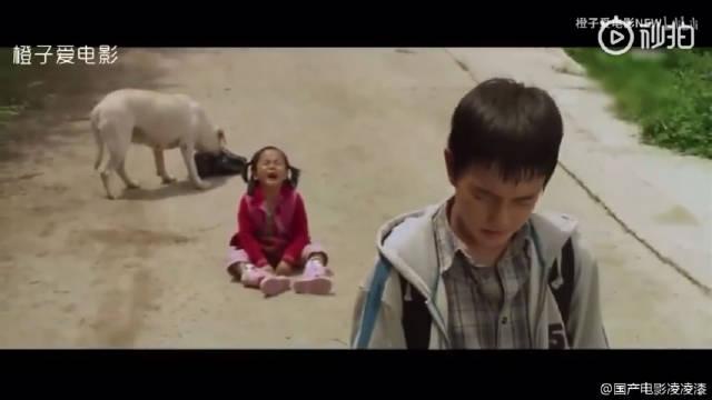 刚为妹妹悲剧难过,转身就被狗狗惹哭!韩国催泪影片!