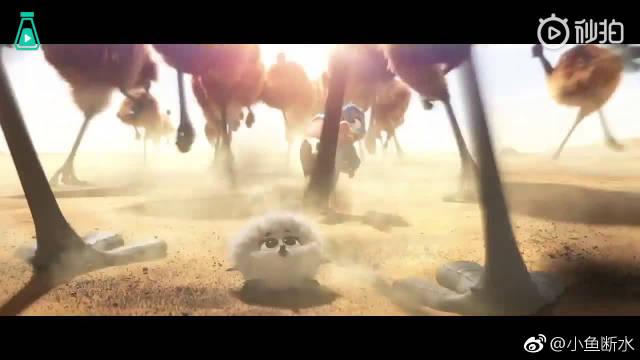 梦工厂出品《Bilby》,入围91届奥斯卡最佳动画短片提名。
