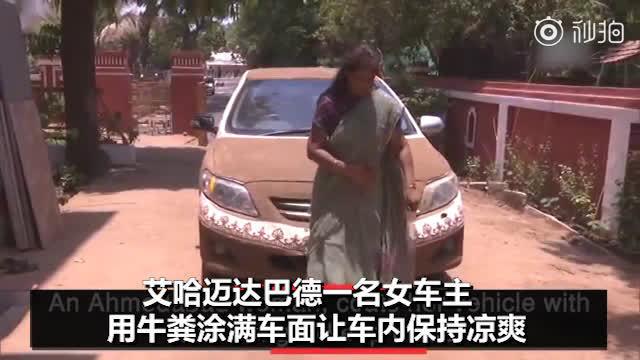 这位来自印度艾哈迈达巴德的女车主,用牛粪涂满汽车表面