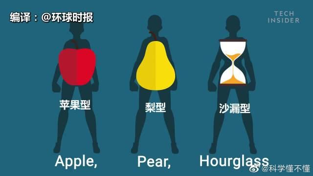 脂肪的分布位置决定了人的身型,通常来说