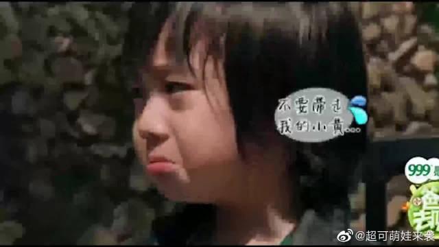 爸爸去哪儿:上交玩具环节,天天Kimi泣不成声