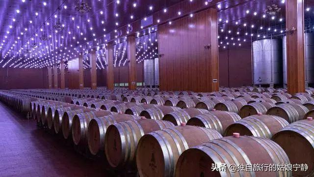 三天逛了15个酒庄 中国也有世界级酿酒厂地 宁夏贺兰山东麓